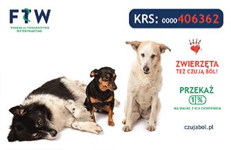 Fundacja Towarzystwo Weterynaryjne wspiera zwierzęta podopiecznych Ośrodka